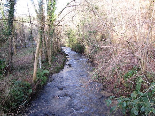 Washford River near Luxborough
