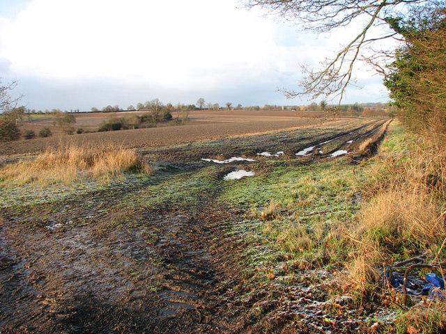 Fields west of Cross Lane