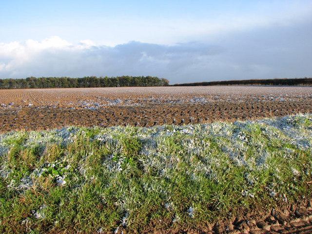 A dusting of snow on fields east of Cross Lane