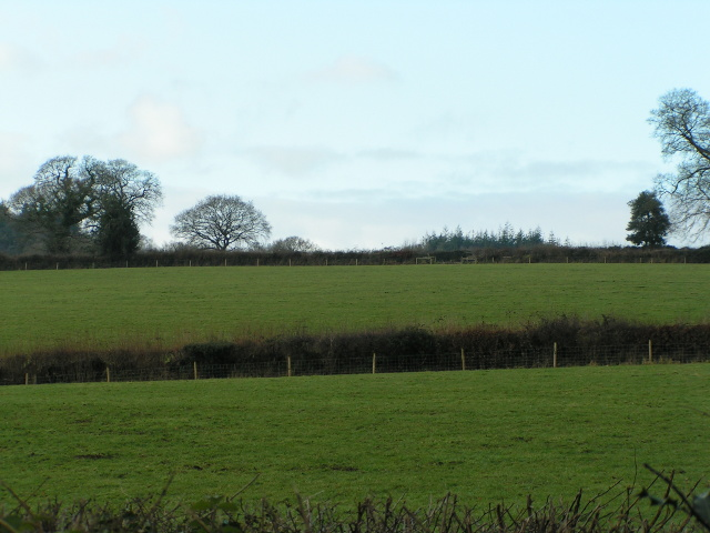 Fields at Lowlands Farm
