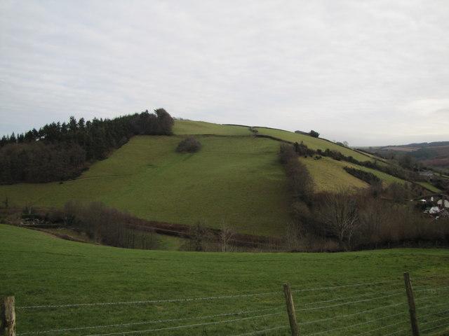 Hill SE of Luxborough