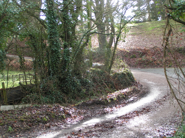 Mud and sunlight on Toadpit Lane