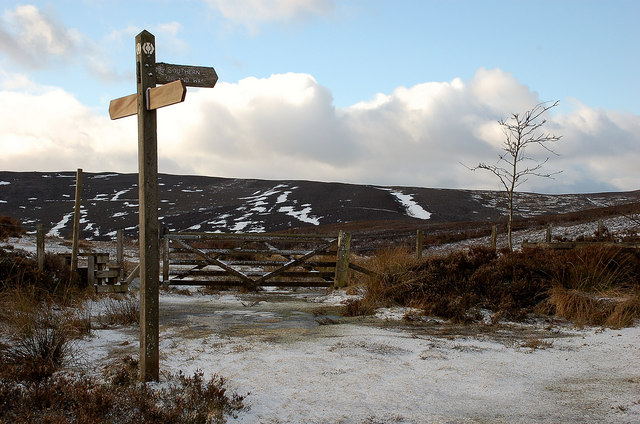 Signpost on the Way