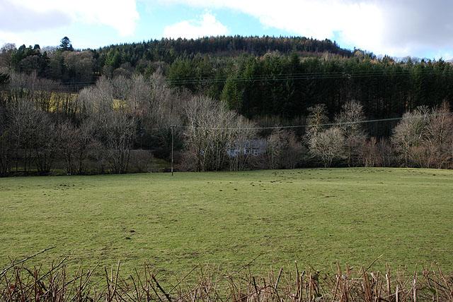 Field by the Afon Dulas at Pantperthog