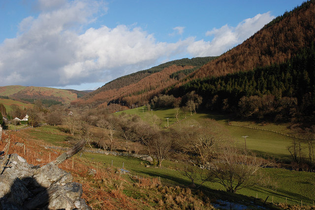 The Dulas valley above Corris
