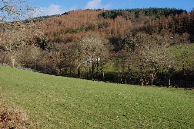 Fields by the Afon Dulas