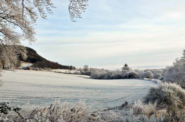 Frosty fields at Easter Moy