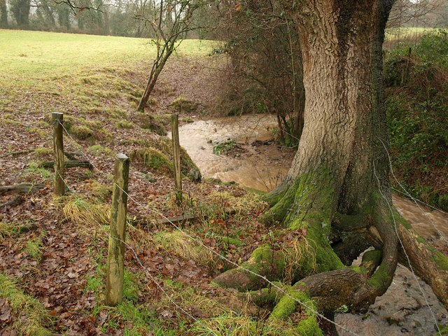 Stream near Greenacres