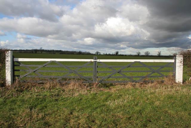 Big gates for a big field