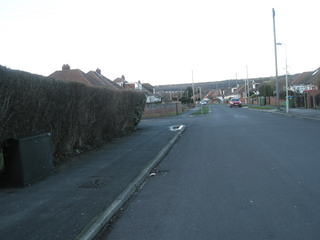 Looking northwards up Bayly Avenue