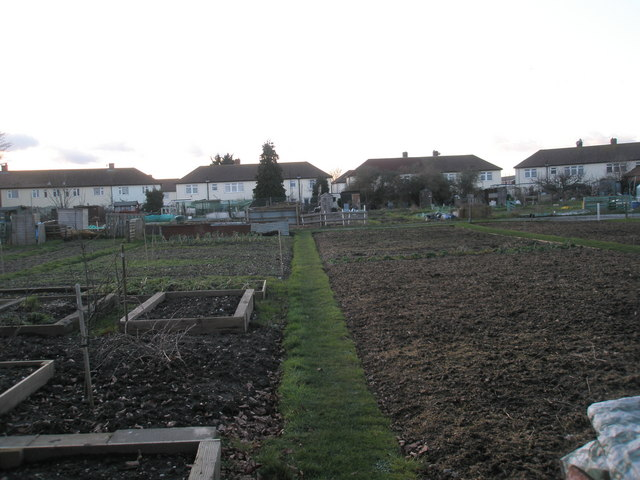 Looking from the cemetery over the allotments towards Kenwood Road