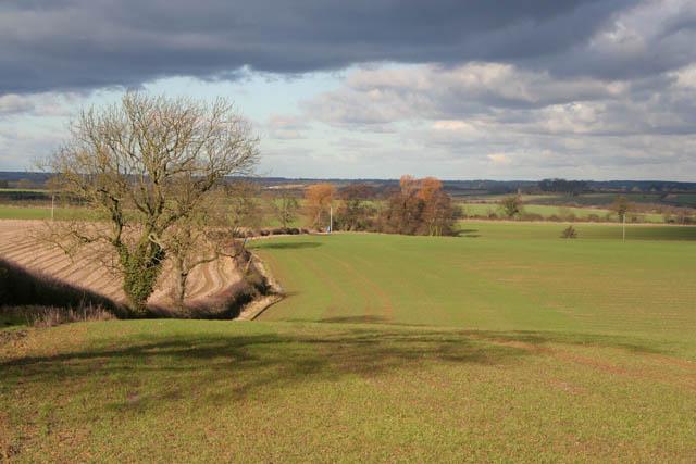 Farmland near Ashwell