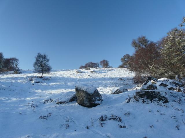 Fresh snow at Strath Carnaigs
