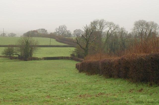 Fields near Bryant's Farm