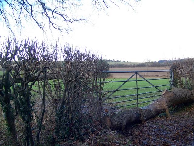 Blocked gateway near Rockbourne