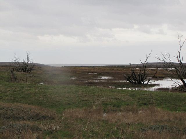 The Marsh, Porlock