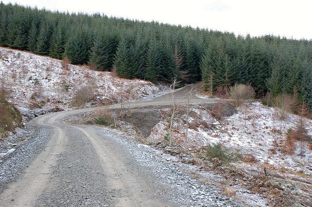 Track crossing the Saughie Burn, Yair