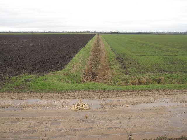 Ditch across Langwood Fen
