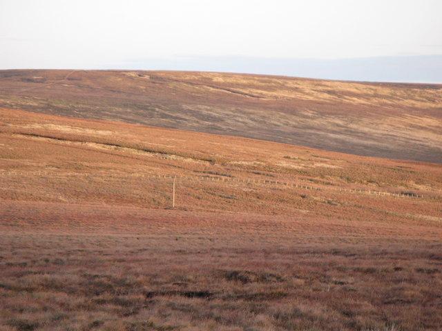 Moorland near Swinhope Head