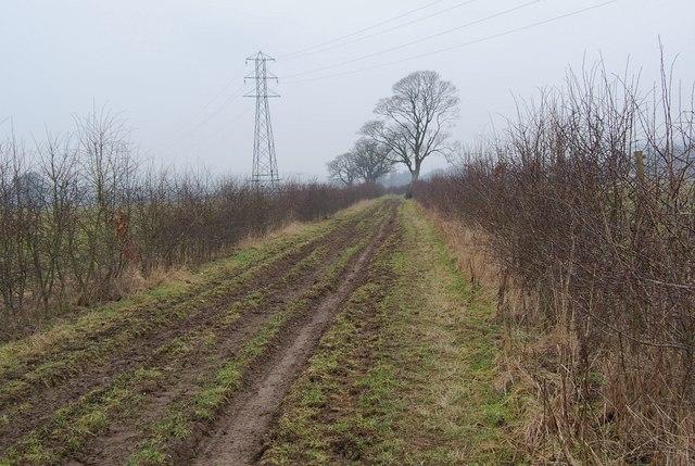 Taith Clwyd on a busy farm track