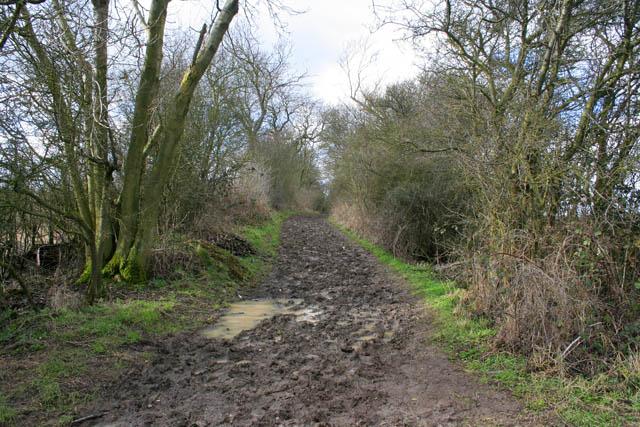 A very muddy public bridleway
