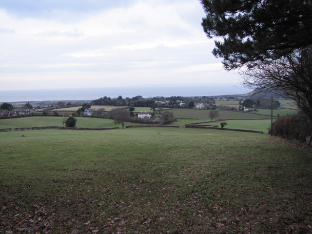 View north from near Luccombe