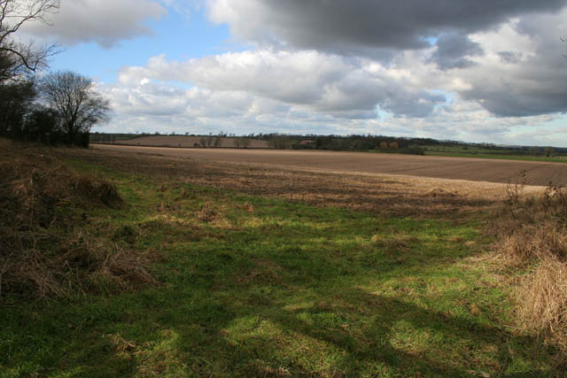 Farmland off Langham Road
