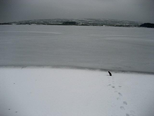 Icebound Malham Tarn
