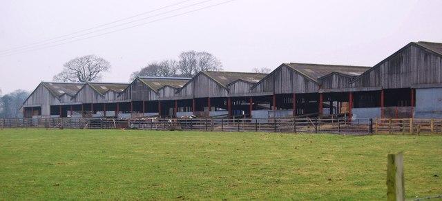 Cattle housing at Cefn Rûg