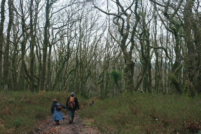 Walkers in Withycombe Scruffets