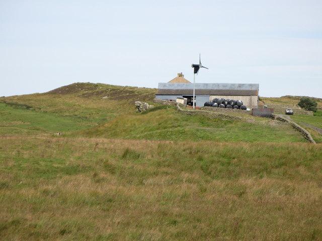 Rough pastures west of Town Shields Farm