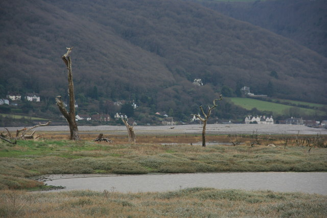 The Marsh, Porlock