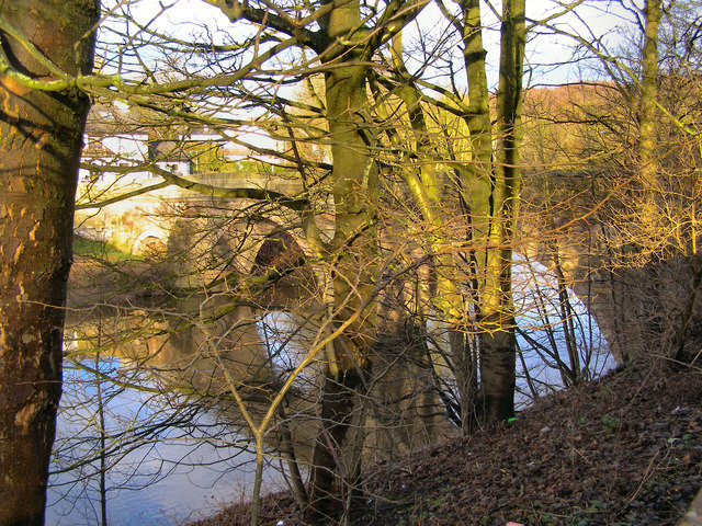 River Irwell, Ringley