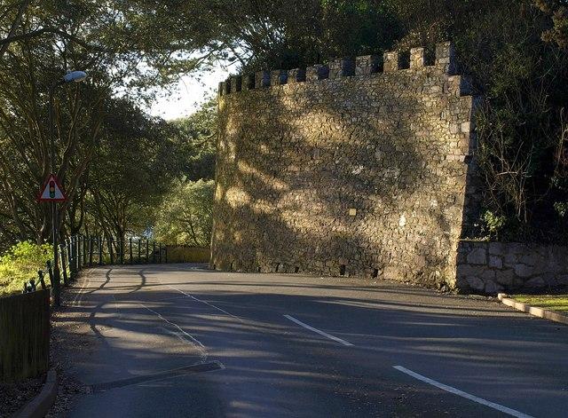 Retaining wall, Kilmorie
