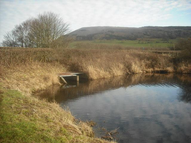 Canal Culvert