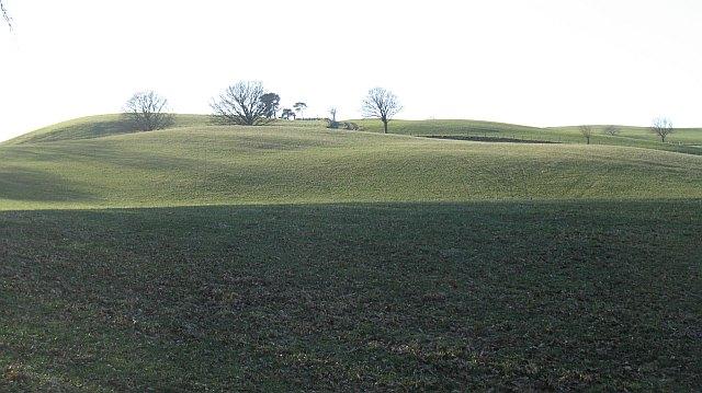 Grassland above Dundriven