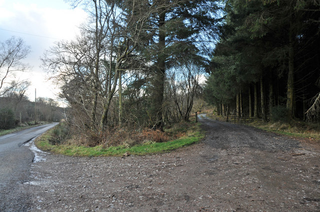 Access road into private forestry