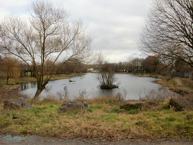 Liswerry Pond from the west