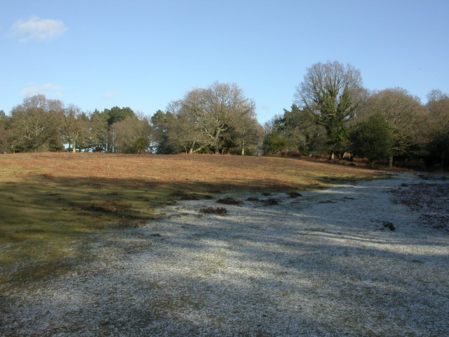 Linwood, snow