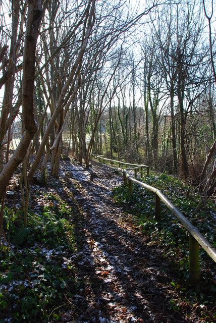 Westpoint Nature area