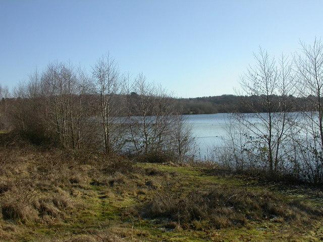 Rockford Lake