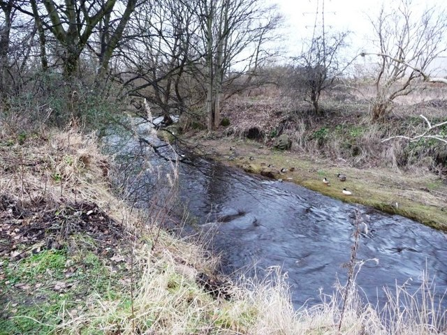 Water of Leith, just below the confluence with Murray Burn
