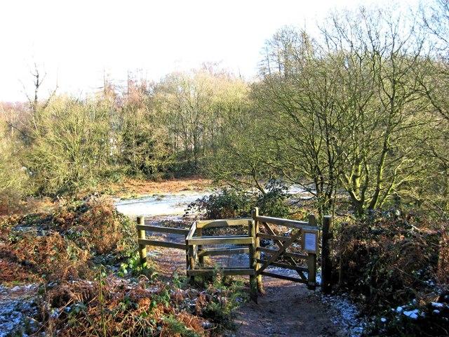 Gate & paths on Kinver Edge