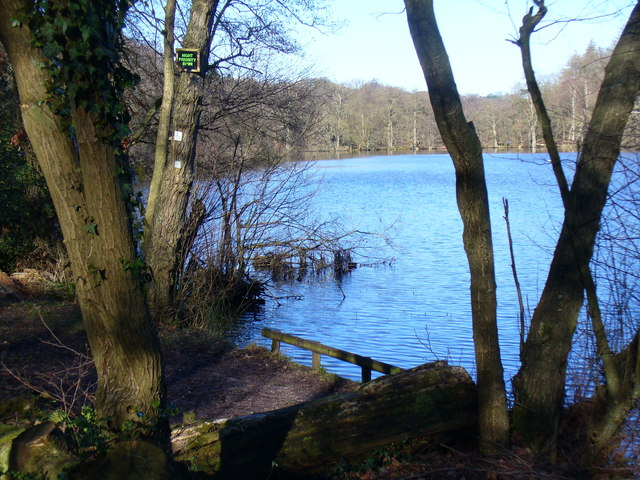 Fishing Point at The Tarn