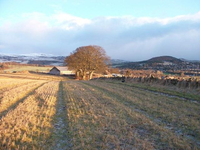 Alichmore Farm