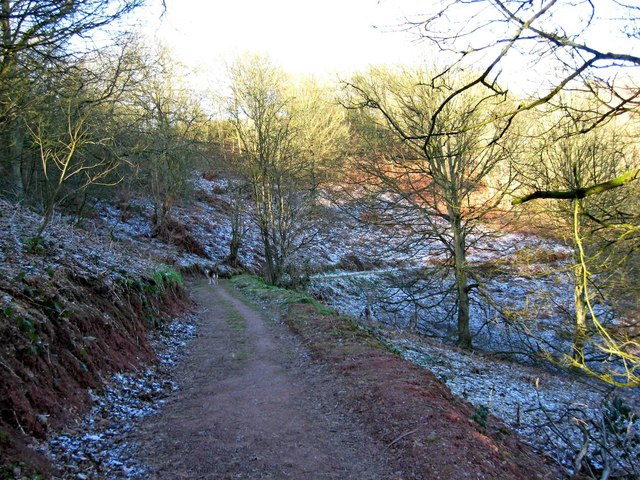 Footpath on Kinver Edge