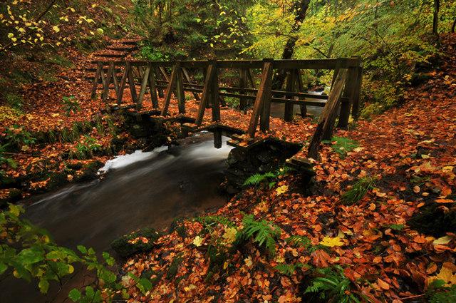 Footbridge in Fairy Glen