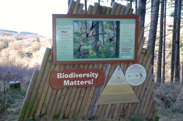 Information board, Glenkinnon Burn Biodiversity Trail