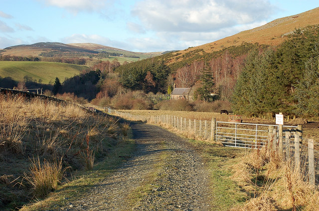 Farm track, cycle route and forest walk