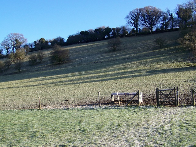 Bridleway near Manton